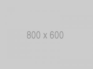 800x600 5 300x225